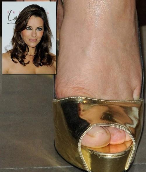 Elizabeth-Hurley-Feet-2d724b476741d7858.jpg