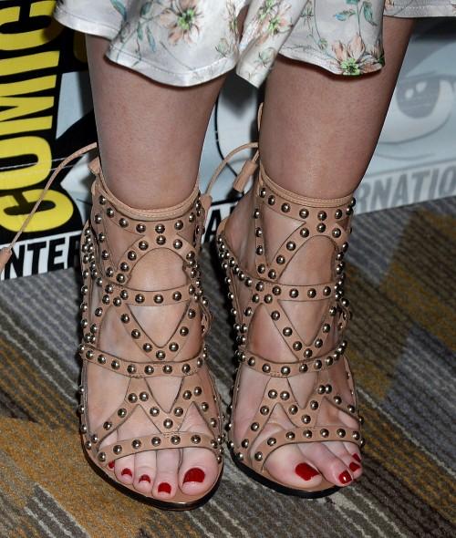 Janet-Montgomerys-Feet-49771d81ecc4a826ab.jpg