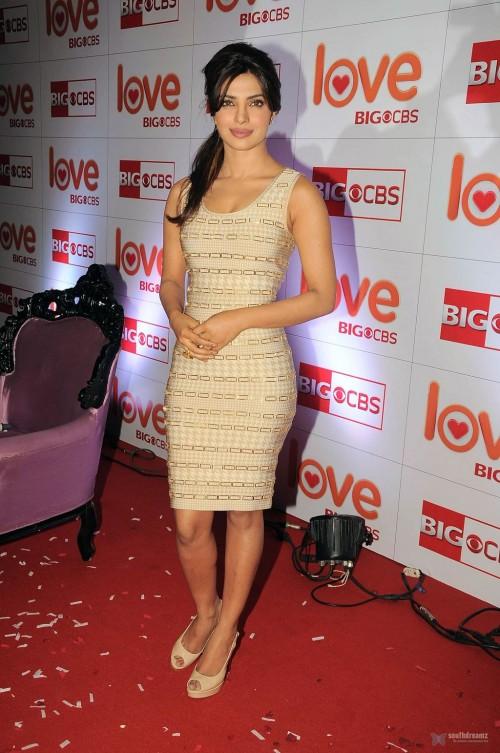 Priyanka-Chopras-Feet-238e00adef481ebb79f.jpg