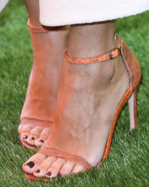 Rachel-Bilson-Feet-19f661a9fe70b4796c.jpg