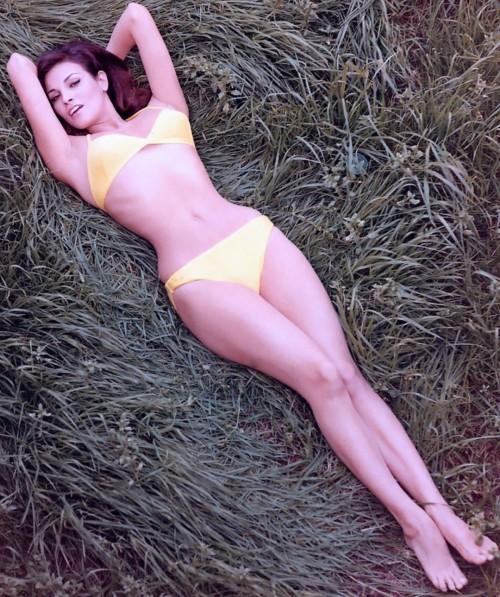 Raquel-Welch-Feet-191bf9b9d48cc60206.jpg